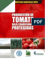 Producción de tomates bajo condiciones protegidas