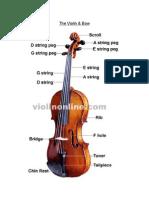 Violin Basico