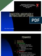 metabolismo-de-lipidos