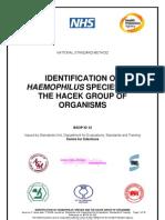 Haemophilus y Grupo HACEK