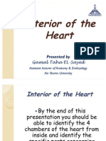 Interior of the Heart