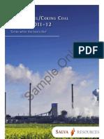 Indian Steel Coal Outlook Sample Product 3