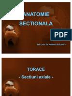 Curs 1 - Torace Axial