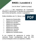 ARTIGO-AGAPORNIS
