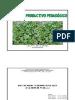 Proyecto de Produccion Agropecuaria Listo Para Imprimir