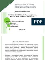 Universidade Federal de Sergipe