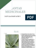 PLANTAS MEDICINALES NATY