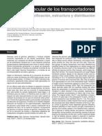 Biologia Molecular de Los Transport Adores de Glucosa