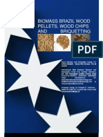 Biomass and Renewable Energy Brazil