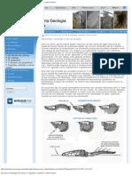 Percurso na Geologia de Arouca - Carpóides, cistóides e outros fósseis