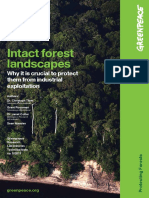Intact Forest Landscapes