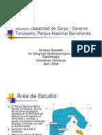 15 ESTUDIO DE CAPACIDAD DE CARGA