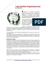 Naturaleza Del Cambio Organizacional765