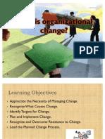 Wht is Organisational Change 07