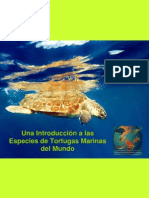 Especies Tortugas Marinas Mundo Es p