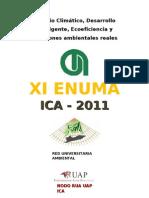 Perfil Del Enuma 2011