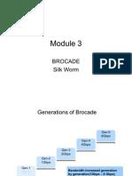 Brocade Silkworm