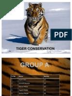 Tiger Conservation