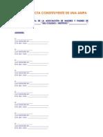 Modelo Acta Fundacional Ampa