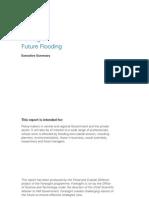 Foresight Future Flooding