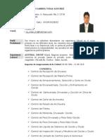 Curriculum de Vidal