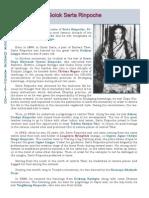 Biography of Golok Serta Rinpoche of Namkha Kyung Dzong tradition of Dudjom Lingpa.