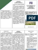 Tripticos Metodologia Cap i y II