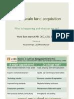 2010 01 24 Deininger Large Scale Land Acquisition