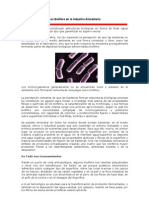 TENDENCIAS Los Biofilms en La Industria Aliment Aria