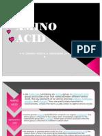 Amino Acid Sandra