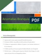 Anomalías Branquiales