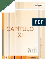 XI_Clasificacion_de_Tipo_de_Gasto