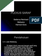 Plexus Saraf