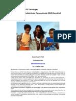 SOS2010 Relatorio Sumario (PT)