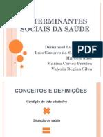 Seminário - Determinantes Sociais da Saúde