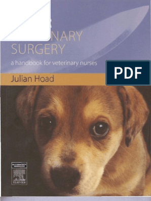 Minor Veterinary Surgery | Surgery | Nursing
