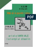 Trimis-Marele Pumn Rosu, Artele Martiale La Templul Shaolin