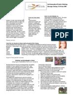 Newsletter June 22 2006