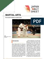e16 Martial Art