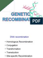 17. Genetic Re Combination