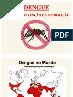 Projeto de combate à Dengue