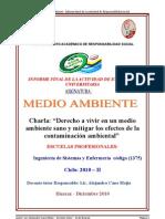 informefinalmedioambiente2010-ii-101229001422-phpapp01