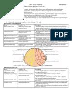 Anatomy SGD1