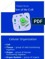 Cell Parts