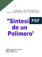 Sintesis de Un Polimero