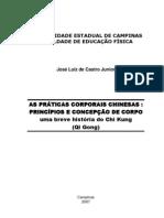 CastroJúnior,JoséLuizde_TCC
