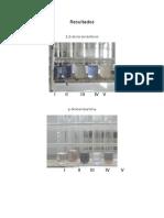 Bioquímica (P6)