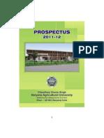 HAU Prospectus 11