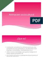 Animacion sociocultural clase