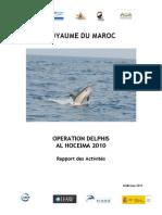 Rapport Final Delphis 2010